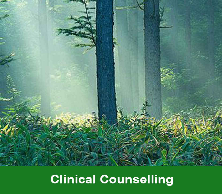 Click here to go to the Clinical Counselling page